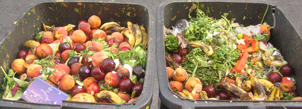 "F&BKP Report: ""Reducing food wastage, improving food security?"""