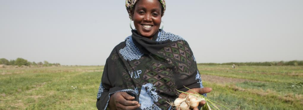 Smallholder engagement with the private sector