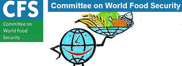 Committee on World Food Security Plenary Session #41