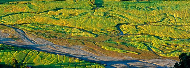 Food Security: Mapping Risks, Building Resilience