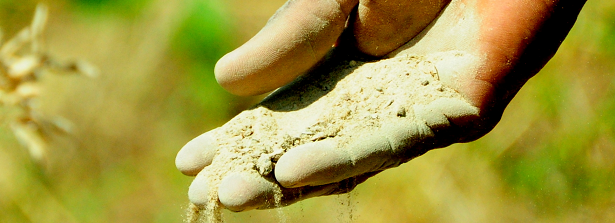Expert team has started Soil Fertility Exploratory study