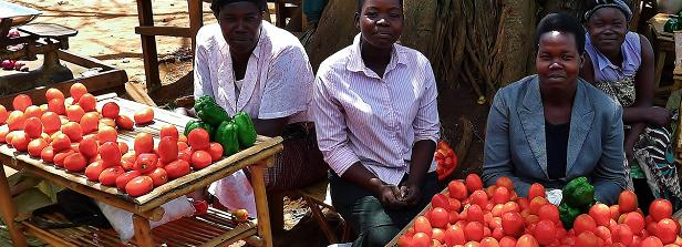 Green Revolution Forum considers Africa's food future