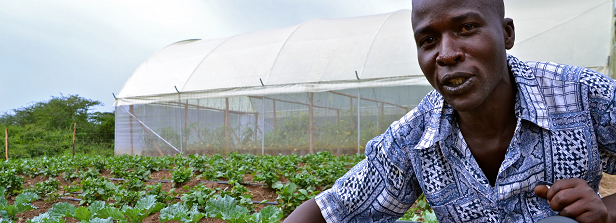 Horticulture and potential for food and nutrition security