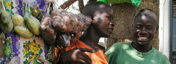 """Vijverbergsession """"From smallholders to entrepreneurs"""""""