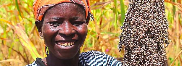 West Africa Farmer Innovation Fair