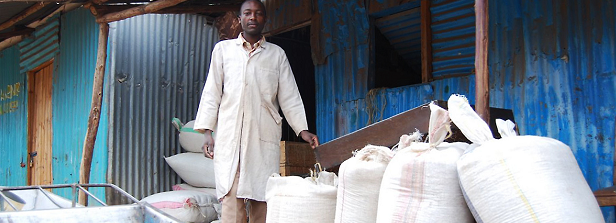 Agribusiness development and trade - Small and medium enterprises