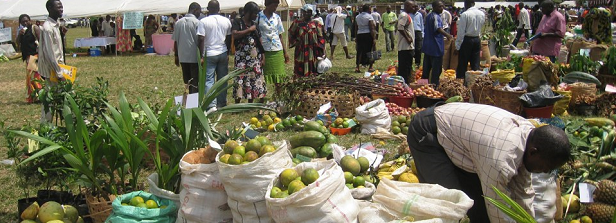 Consumption and food markets
