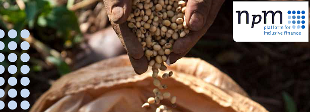 Research: Financing of African smallholder farmers offers solutions for worldwide food security