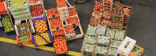 Agrofood supply chain efficiency for food & nutrition security