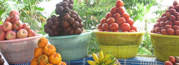 Knowledge agenda Fruits & Vegetables Sector and Food & Nutrition Security