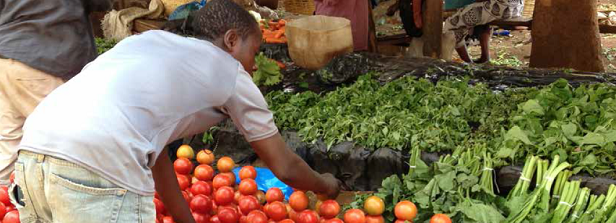 How does the Fruit and Vegetable Sector in low- and middle-income countries contribute to Food and Nutrition Security?