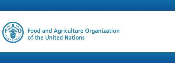 FAO e-conference