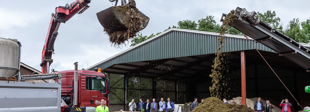 Potato takes precedence over combating subsidence
