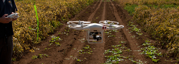 Precision fertilizing using drones and scanners