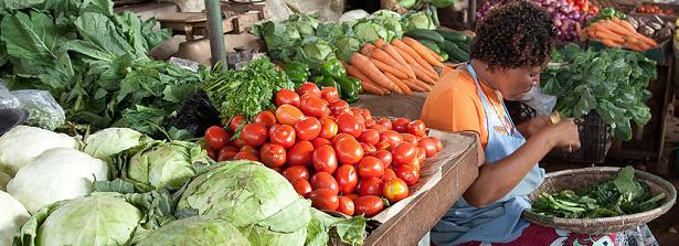 GCP2 Women Food Entrepreneurs in Kenya and Burkina Faso