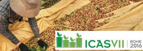 ICAS VII Rome 2016