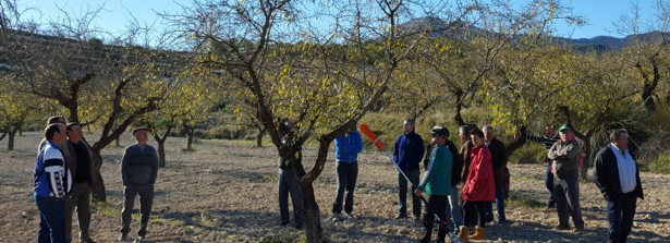 Farmers from cooperation Alvelal watching their almond trees in Southern Spain