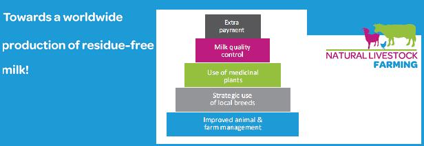 Natural Livestock Farming Antibiotic reduction strategy raises interest at World Bank