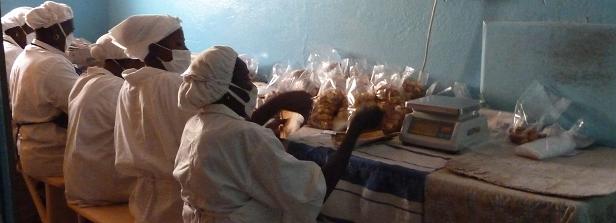 A familiarizing field visit to Ouagadougou, Burkina Faso