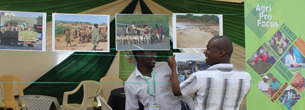 Report Extensive Livestock Expo, Kenya 2015