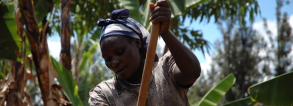 Training Course on Gender Integration in Food and Nutrition Security