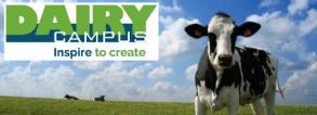 Summer course Dutch dairy chain
