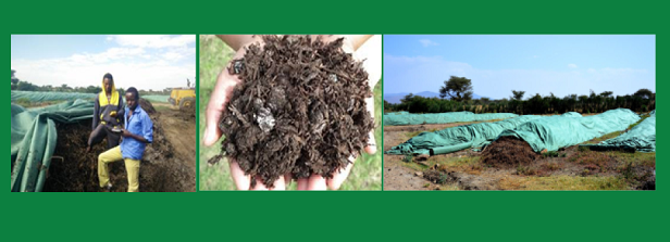 Workshop on Composting for Sustainable Agriculture