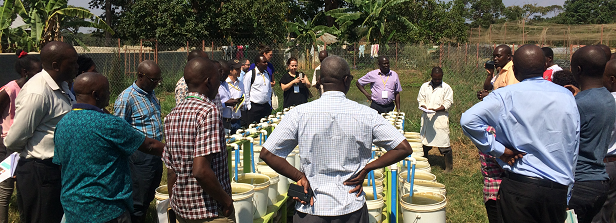 Nine Ugandan Food & Business projects gathered to enhance their policy relevance
