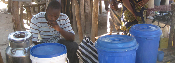 GCP1 Zambian traditional fermented foods