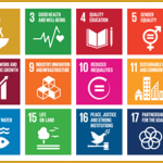 Joint SDG research initiative - Tackling Global Challenges through Use-Inspired Research