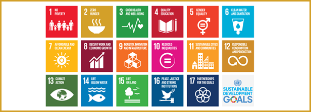 Joint SDG research initiative launched
