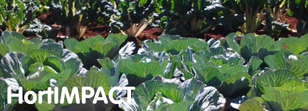 Horticulture mission to Kenya