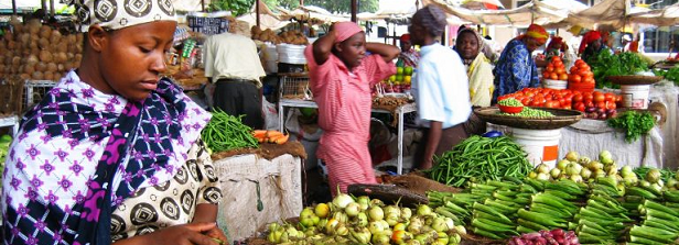 What's new in inclusive agribusiness