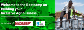 Online Bootcamp on Building your Inclusive Agribusiness