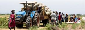 Incubating Agribusiness in Africa