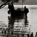 ARF-3-2b Bangladesh Mangrove
