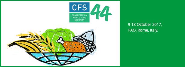 CFS 44