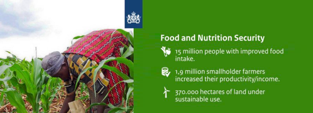 Dutch Development Results 2016 in Perspective: Food and Nutrition Security highlights
