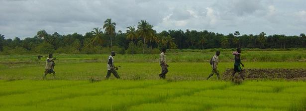 Land Governance