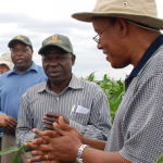 Progress Agribusiness-based Advisory Services (ABAS) project