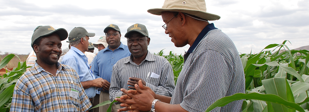 Agribusiness-based Advisory Services (ABAS) project, update 01