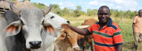GCP-4 Understanding and scaling Organizations for SMAllholder REsilience