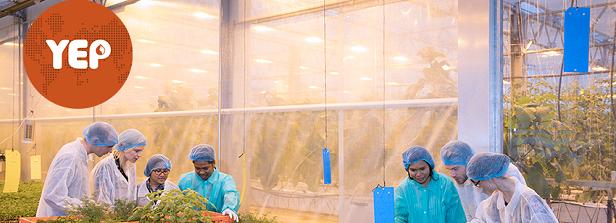Six new vacancies YEP Agrofood