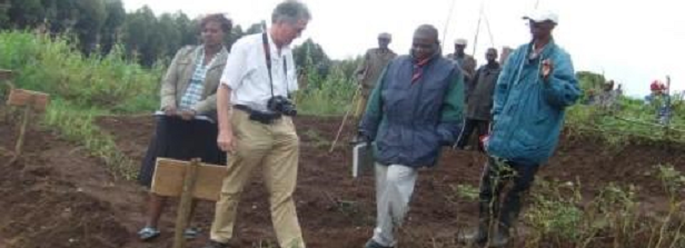 ARF-1 factsheet: More potatoes – Secure food in Burundi