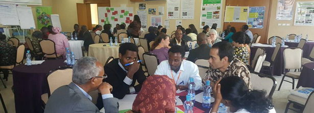 ARF-3 international workshop in Ethiopia