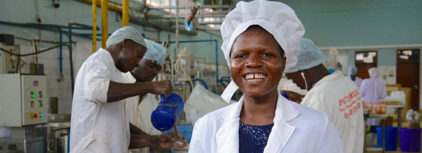New study challenges funds and governments to invest in African agrifood SMEs