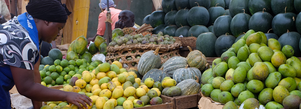 How to make agricultural programmes work for nutrition