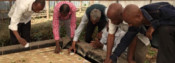 Training the benificiaries