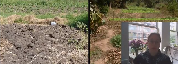 Video with results of the soil survey in Kisumu and Ouagadougou