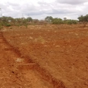 ARF-3 ROFIP project - Trench bunds for rainwater harvesting and soil conservation